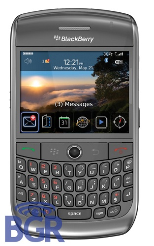 blackberry93001.jpg