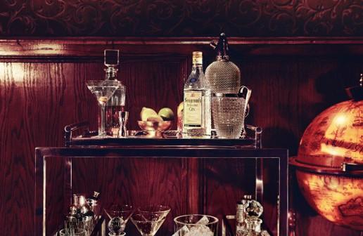 Seagram's Gin Dry Gin, una ginebra con mucho que decir